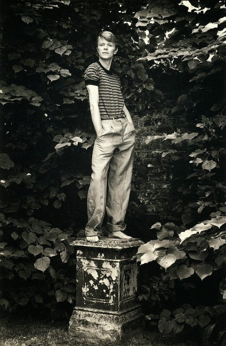 David Bowie, 1978 by Lord Snowdon (1)