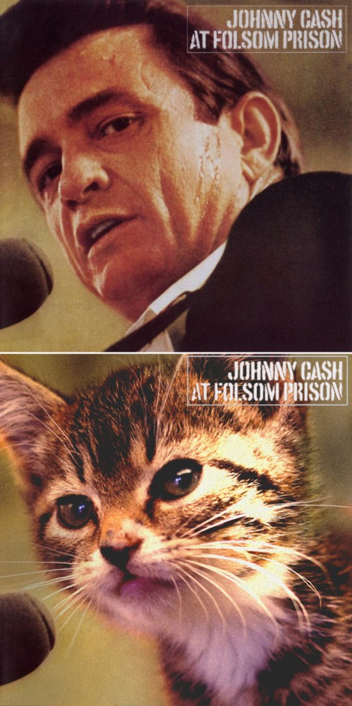 classic-album-covers-ft-kittens-14
