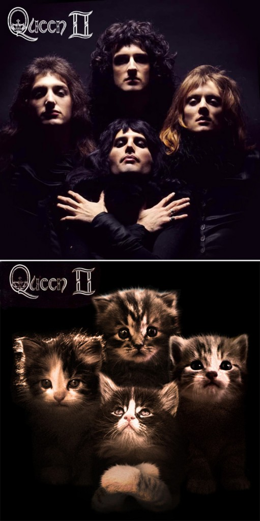 classic-album-covers-ft-kittens-5