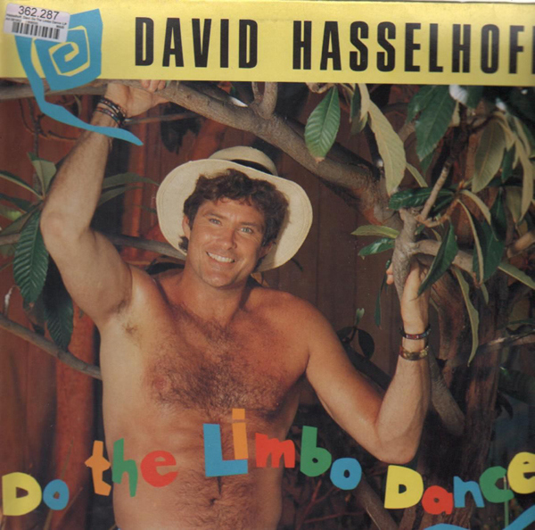 david_hasselhoff-do_the_limbo_dance1